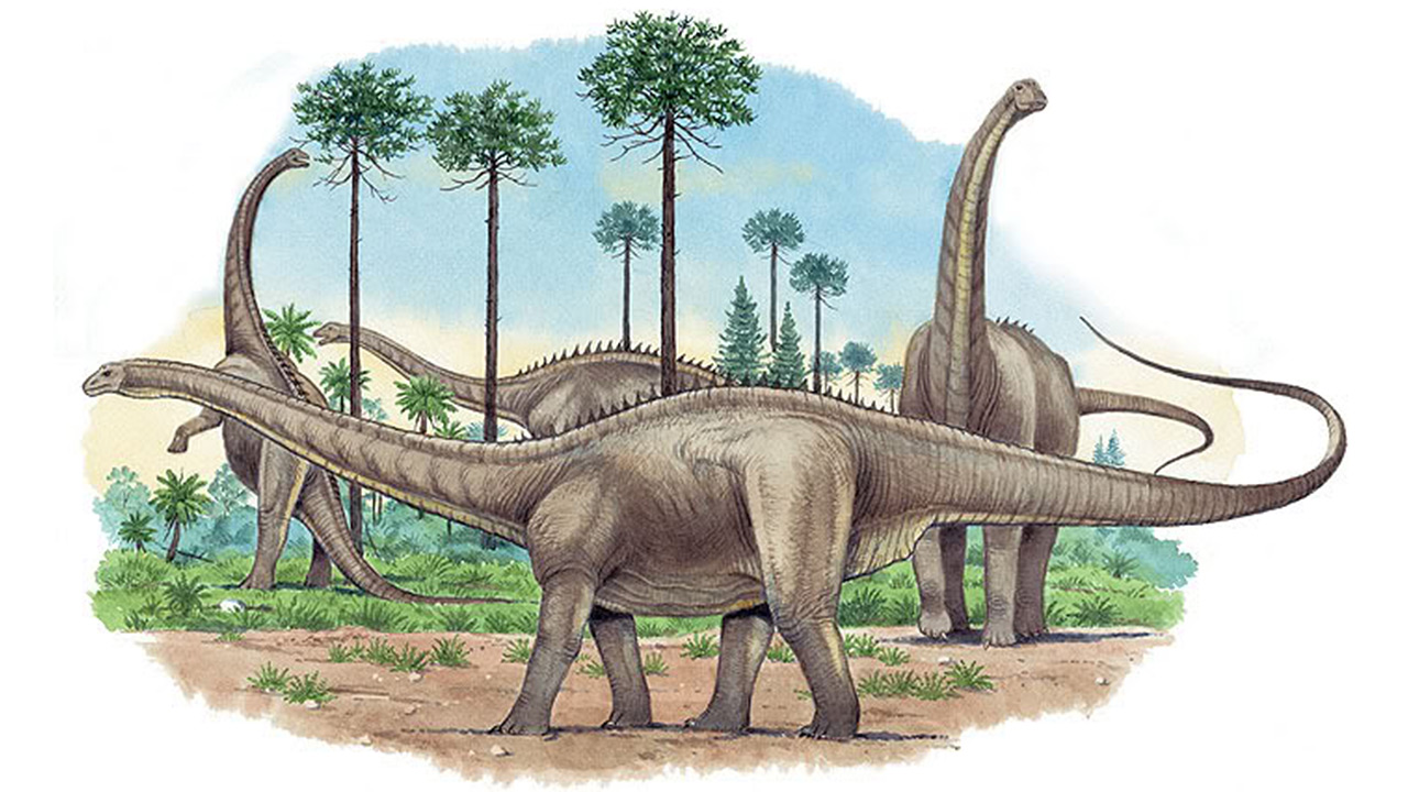 dinosaurios_mas_grandes_apatosaurus