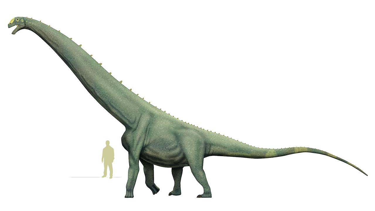 dinosaurios_mas_grandes_futalognkosaurus