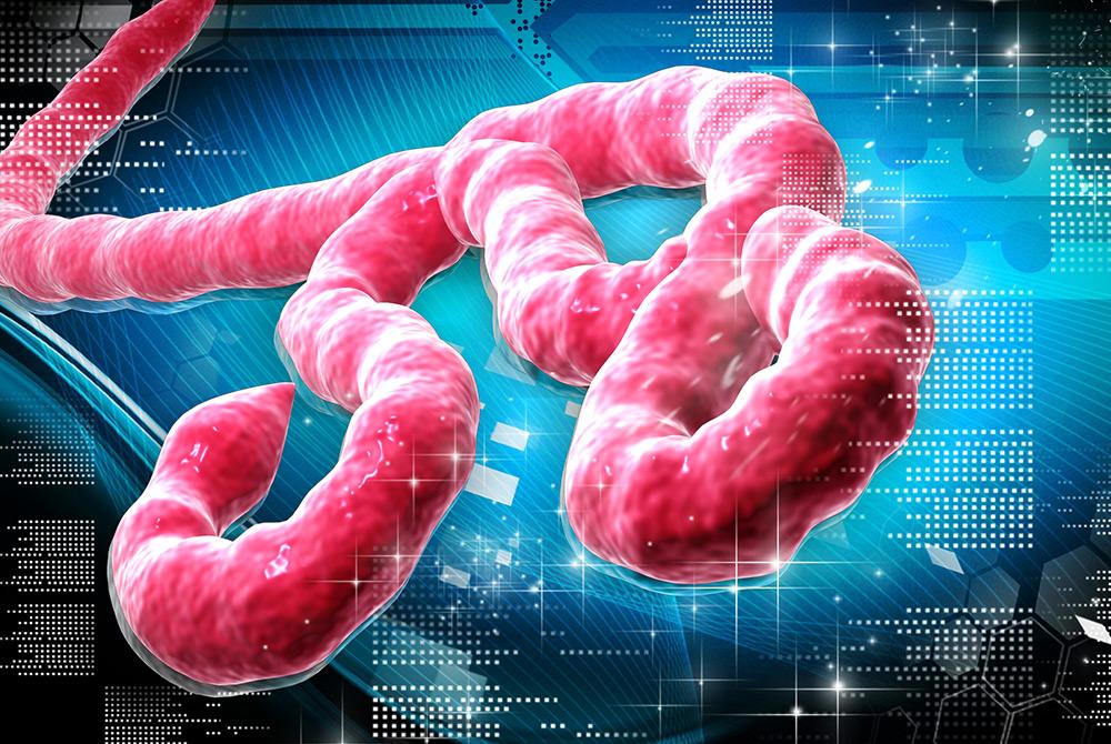 Los 10 virus más peligrosos del mundo